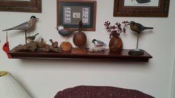 Variety of Birds Shelf