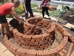 Rowena adds some lucerne mulch