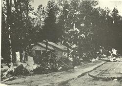 Debris in the trees