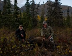 2012 moose taken by Dr George Stark