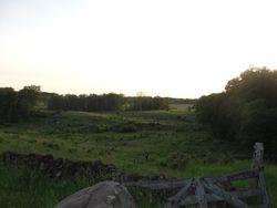 Triangel Field