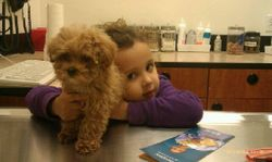 Justin ADOPTED March 2012