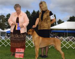 Sammamish Kennel Club