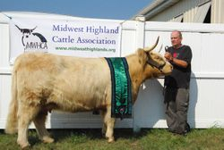Grand Champion Cow without her calf Snowland First Lady