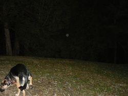 Winnie with an orb.