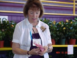 Sandra Theall, Chapter President, getting her award winning blooms ready