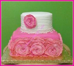 CAKE 55A1