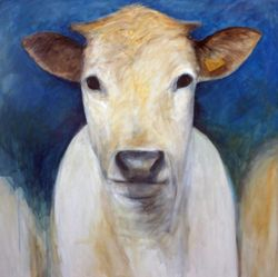 Cow 631