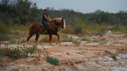 West Texas Solo Ride