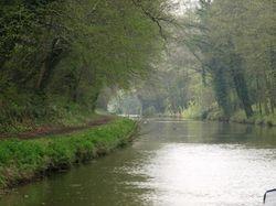 Treelined canal