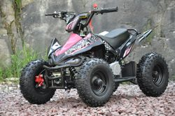 49cc Sports Pink