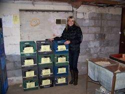 Dahlia Crates