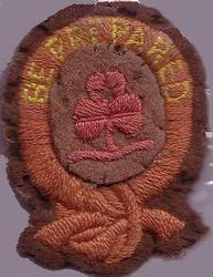 Ranger First Class Badge