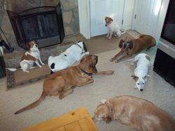 group down at door