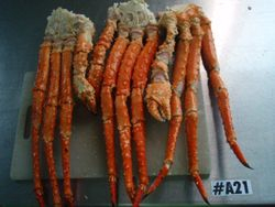 KING CRAB FROM RUSSIA