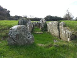 Audleystown Court Tomb, Strangford, County Down