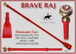 Brave Raj