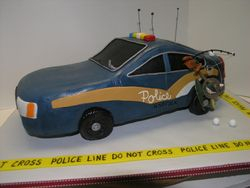 Norfolk Police Car
