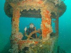 Segeltörns und Kojencharter in der Karibik und der Grenadinen. Mitsegeln in der Karibik und Karibik Reisen.