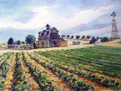 Windmill Barns, Nipomo (original)