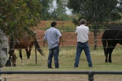 Bruce and Brad checking out the ladies..