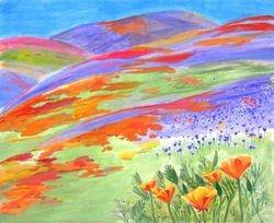 Wild Flower Field In Roman CA