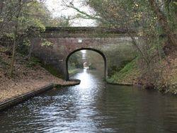 Bridges within bridges