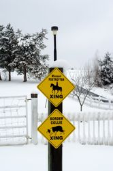 Missouri Fox Trotter & Border Collie Crossing Signs