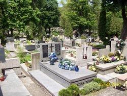 A Polish Cemetery