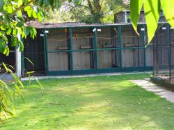 Some of the Aviaries