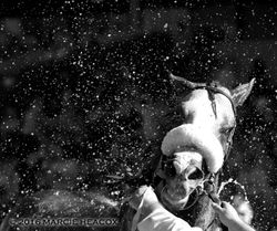 Black and White Droplets