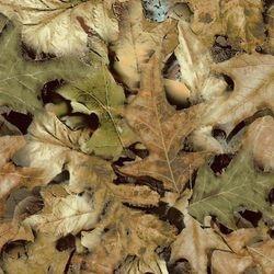 WTP 318 Camo Fall Leaf