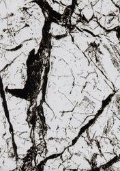 WTP 201 Black Marble