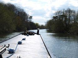 Cruising the Thames