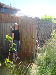 Chicken run getting a gate