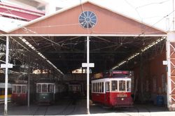 Tourist Trams on Shed
