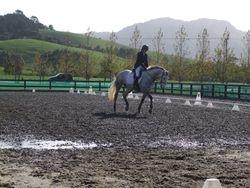 Christine Jeffs riding Levada