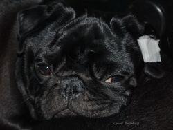 Egon 19.02.2010