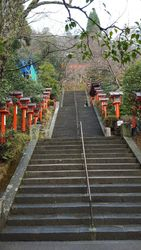 Steps to Tenporin-do