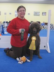 Penny winning third place in Rally Excellent B and earning her second RE leg.  1/29/11.