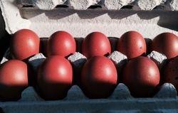 Eggs Feb. 2014