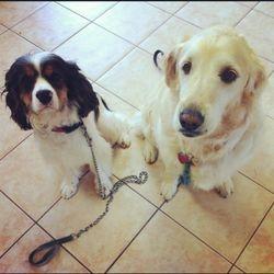 Oscar and Minnie