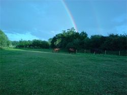 Spring rainbow over the Summer field