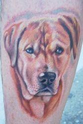 In Memory of Glen's Dog Jake
