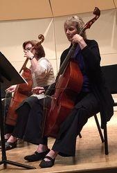 Viol Faculty Performers