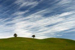 Cheviott Hills