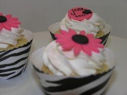 Zebra/Hot Pink Cupcakes