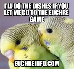 I'll do the dishes if you let me go to the Euchre game.