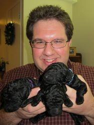 3 boys.  Niall, Plato, Gunner.  1 week old.