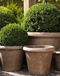 Planificamos y diseñamos tu jardín